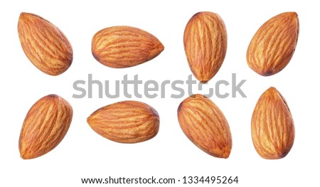 almond piece closeup collection white isolated  #1334495264