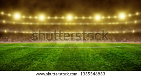 Stadium with the bright lights and green grass #1335546833