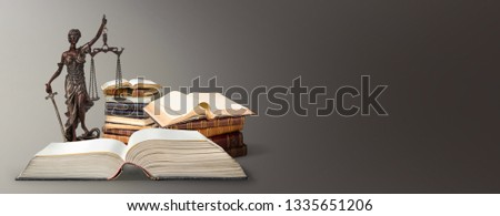 A picture of a Themis statue standing at books  background