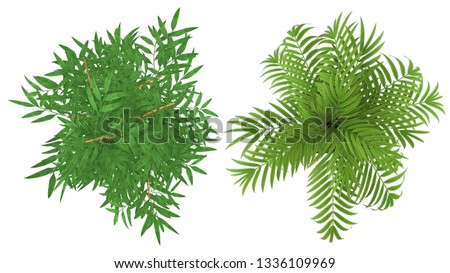 clipping path of isolate interior plants top view on white background #1336109969