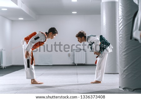 Two Caucasian boys in taekwondo fittings bowing at each other after combat. #1336373408