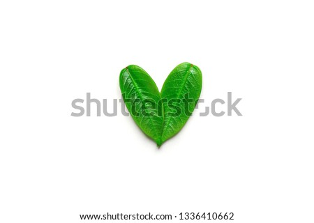 Heart symbol made from young green tree leaves isolated with shadow on solid white background. Environmental conservation plastic free vegan recycling concept. Design element poster banner template Royalty-Free Stock Photo #1336410662