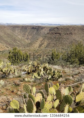 agua fria river with cactus and snow in front  #1336684256