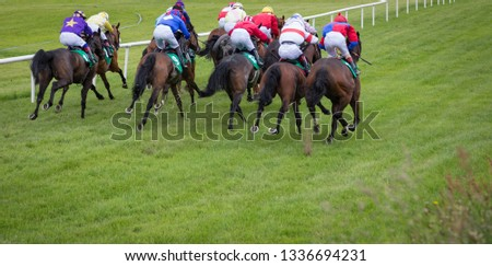 Panorama of horse race galloping down the track, view from behind #1336694231