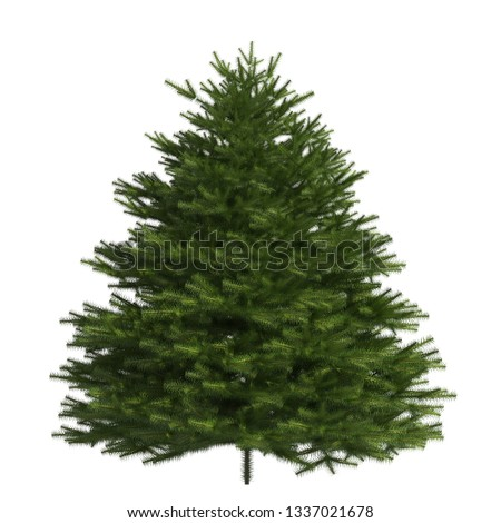 Pine tree 3d illustration isolated on the white background #1337021678