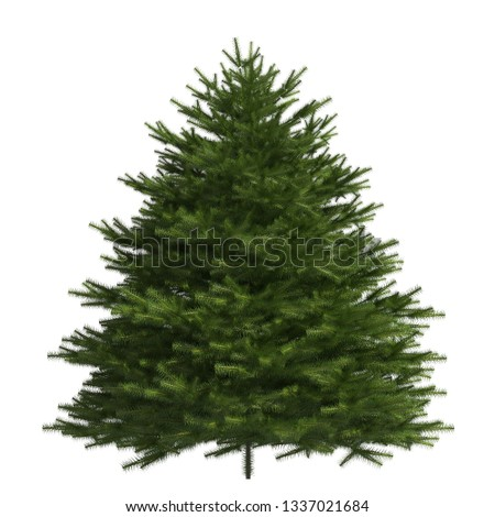 Pine tree 3d illustration isolated on the white background #1337021684