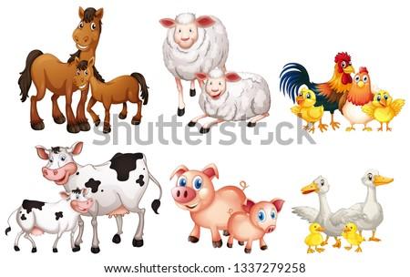 Set of farm animal illustration