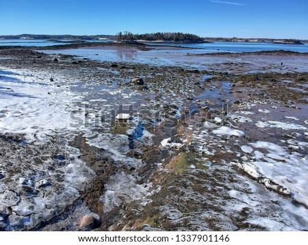 coastal downeast Maine  #1337901146