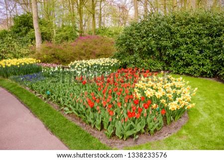 garden landscape.  garden in spring #1338233576