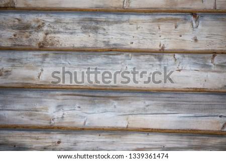 Wall of wood texture closeup #1339361474