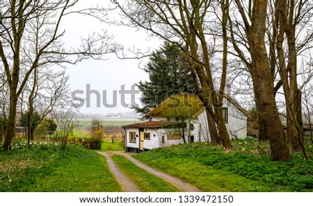 Forest house road landscape. Forrest road house view. Road house in forest scene. Forest road house view #1339472150