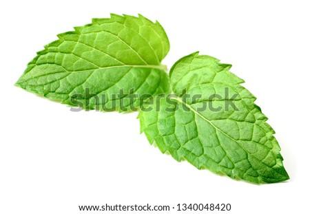 fresh mint isolated on white background #1340048420