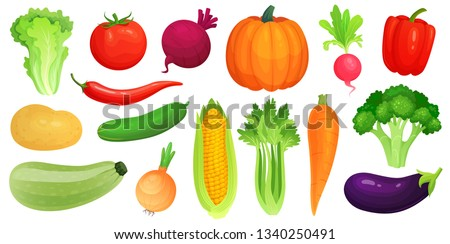 Cartoon vegetables. Fresh vegan veggies, raw vegetable green zucchini and celery. Lettuce, tomato and carrot. Vegetables food, gardening pumpkin and broccoli. Vector illustration isolated icons set #1340250491