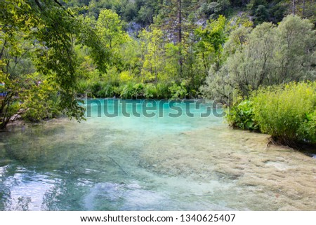 turquoise waters of Plitvice Lakes National Park in Croatia. A UNESCO natural Heritage. #1340625407
