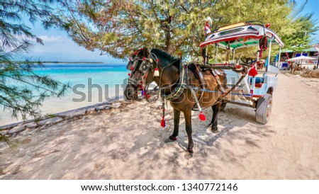 A decorated horse drawn cart known as a cidomo, on Gili Meno island in Lombok province, Indonesia. Motorized vehicles are banned in the Gili islands. #1340772146