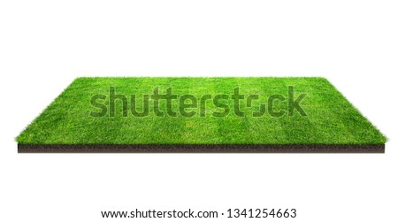 Green grass field isolated on white with clipping path. Sports field. Summer team games. Exercise and recreation place. #1341254663