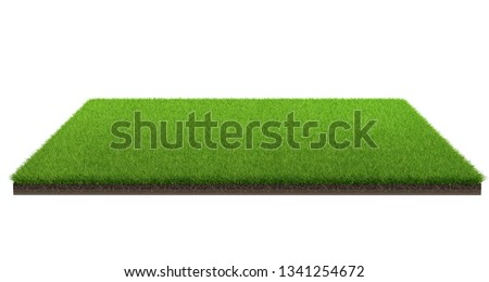 3d rendering of green grass field isolated on a white background with clipping path. Sports field. Exercise and recreation place. #1341254672