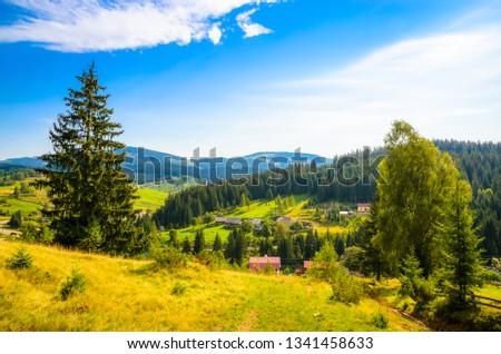 Summer mountains landscape #1341458633