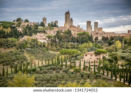 Beautiful Tuscan landscape with cypresses and vineyards. In the vicinity of San Gimignano. Tuscany, Italy  #1341724052