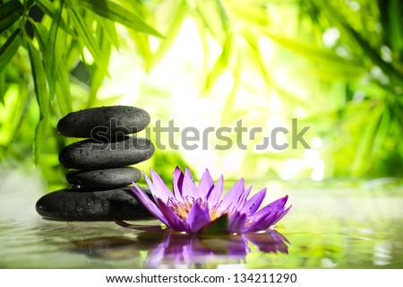 Spa still life with lotus and zen stone on water,bamboo background. #134211290