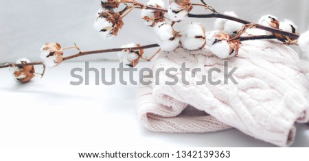 pink knitted sweater lies next to a cotton branch on a light background #1342139363