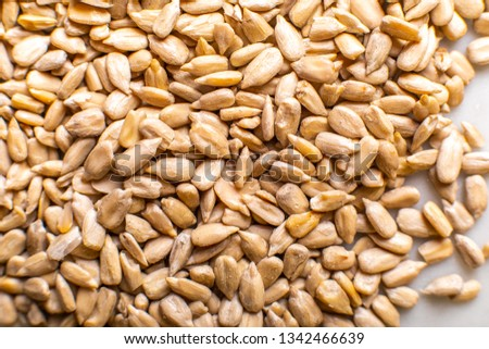 texture of sunflower seeds on a light background #1342466639