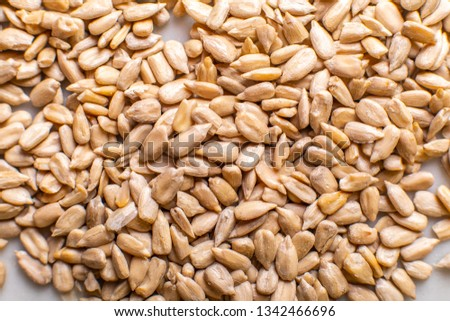 texture of sunflower seeds on a light background #1342466696