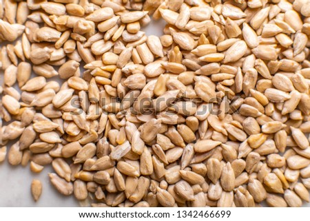 texture of sunflower seeds on a light background #1342466699