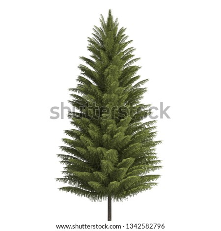 Pine tree 3d illustration isolated on the white background #1342582796