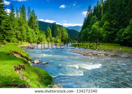 landscape with mountains, forest and a river in front. beautiful scenery Royalty-Free Stock Photo #134272340