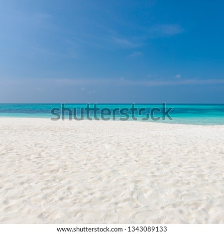 Empty tropical beach background. Horizon with blue sky and white sand, coast and waves. #1343089133