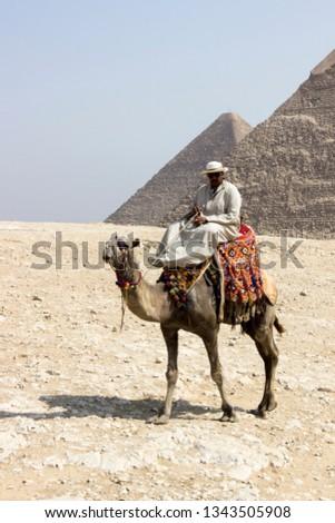 Camelier riding his own camel near the Pyramids of Giza, Cairo, Egypt. October 2018.  #1343505908