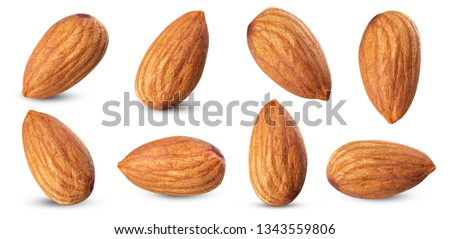 piece almond  healthy food  ingredient . almond full macro shoot  nuts on white isolated .Clipping path #1343559806