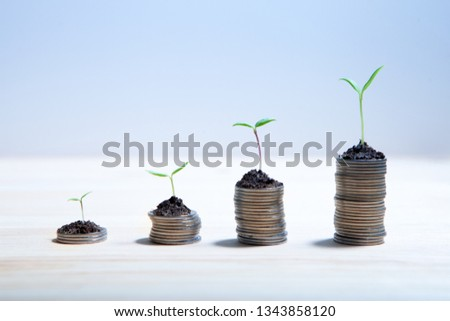 Idea money growing concept. Business success concept. Trees growing on pile of coins money  #1343858120