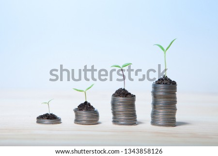 Idea money growing concept. Business success concept. Trees growing on pile of coins money  #1343858126