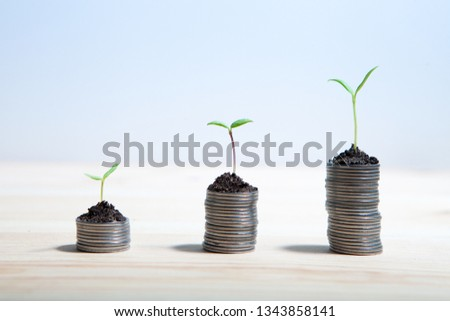 Idea money growing concept. Business success concept. Trees growing on pile of coins money  #1343858141