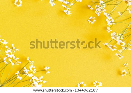 Flowers composition. Chamomile flowers on yellow background. Spring, summer concept. Flat lay, top view, copy space Royalty-Free Stock Photo #1344962189