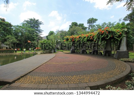 JAKARTA, INDONESIA - MARCH 20, 2019 : Spathodea Park is one of green park in South Jakarta, Indonesia  #1344994472