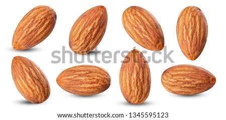 almond raw piece collection set.almond full macro shoot nuts healthy food ingredient on white isolated .Clipping path #1345595123