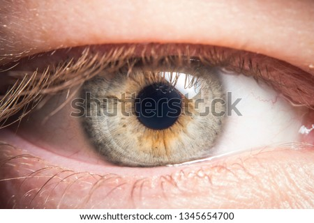 Human eye medical detail #1345654700