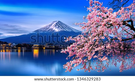 Fuji mountain and cherry blossoms in spring, Japan. #1346329283