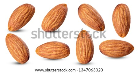 almond raw piece collection set.almond full macro shoot nuts healthy food ingredient on white isolated .Clipping path #1347063020
