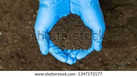 hands of a scientist hold and research bunch of soil #1347172577