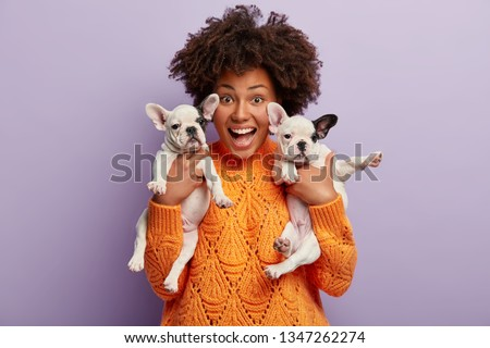 Headshot of overjoyed emotional dark skinned young woman sells two breed puppies, being in high spirit for playing with favourite pets, rejoices good moments, isolated over purple background. #1347262274