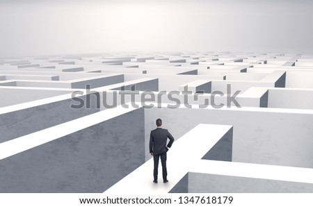 Small businessman in a middle of a huge maze #1347618179