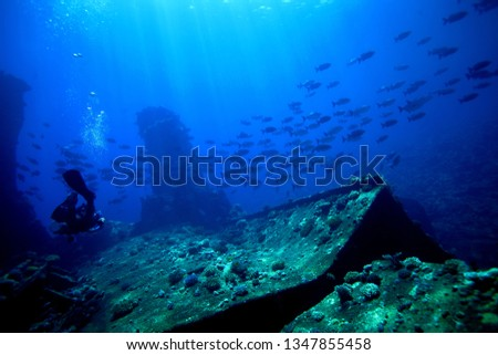 Underwater scuba diving  #1347855458