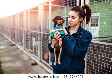 Young woman in dog shelter. Royalty-Free Stock Photo #1347966221