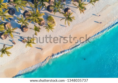 Aerial view of umbrellas, palms on the sandy beach, people, blue sea with waves at sunset. Summer holiday in Zanzibar, Africa. Tropical landscape with palm trees, parasols, white sand, ocean. Top view #1348035737