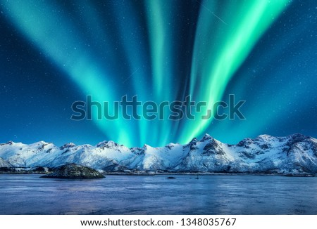 Aurora borealis above the snow covered mountains in Lofoten islands, Norway. Northern lights in winter. Night landscape with polar lights, snowy rocks, reflection in the sea. Starry sky with aurora #1348035767