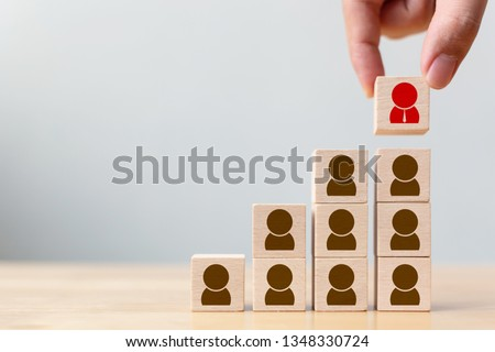 Human resource and talent management and recruitment business concept, Hand putting wood cube block on top staircase Royalty-Free Stock Photo #1348330724